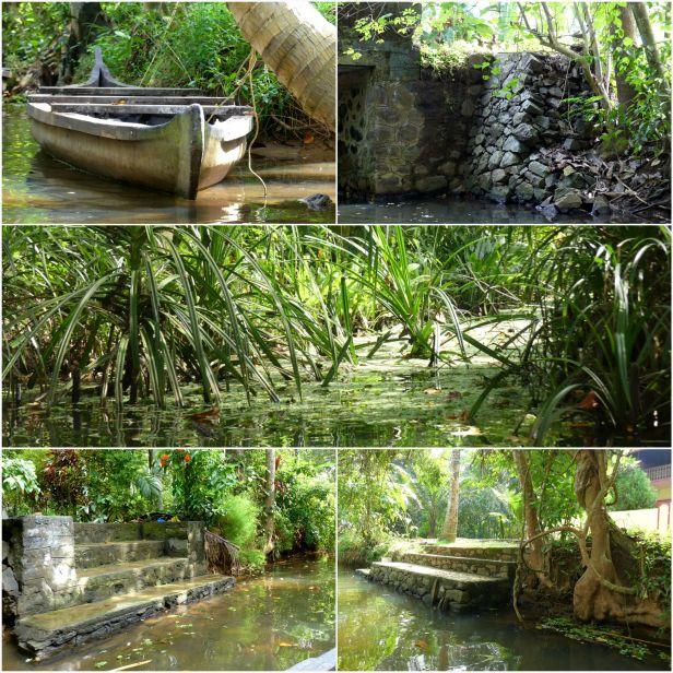 Backwater of Cochin